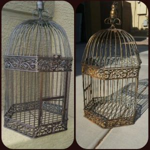 Bird Cage before and after